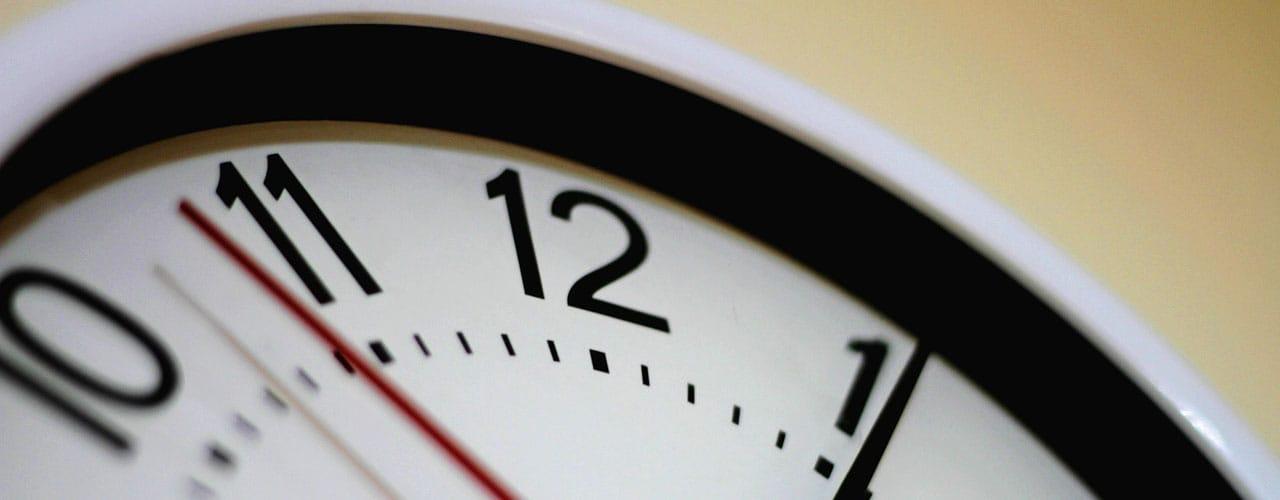 clock - pest treatment timing