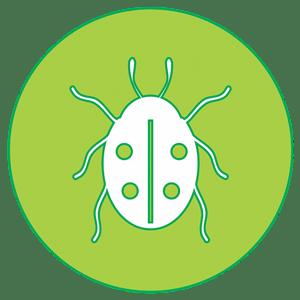 icon-ladybug