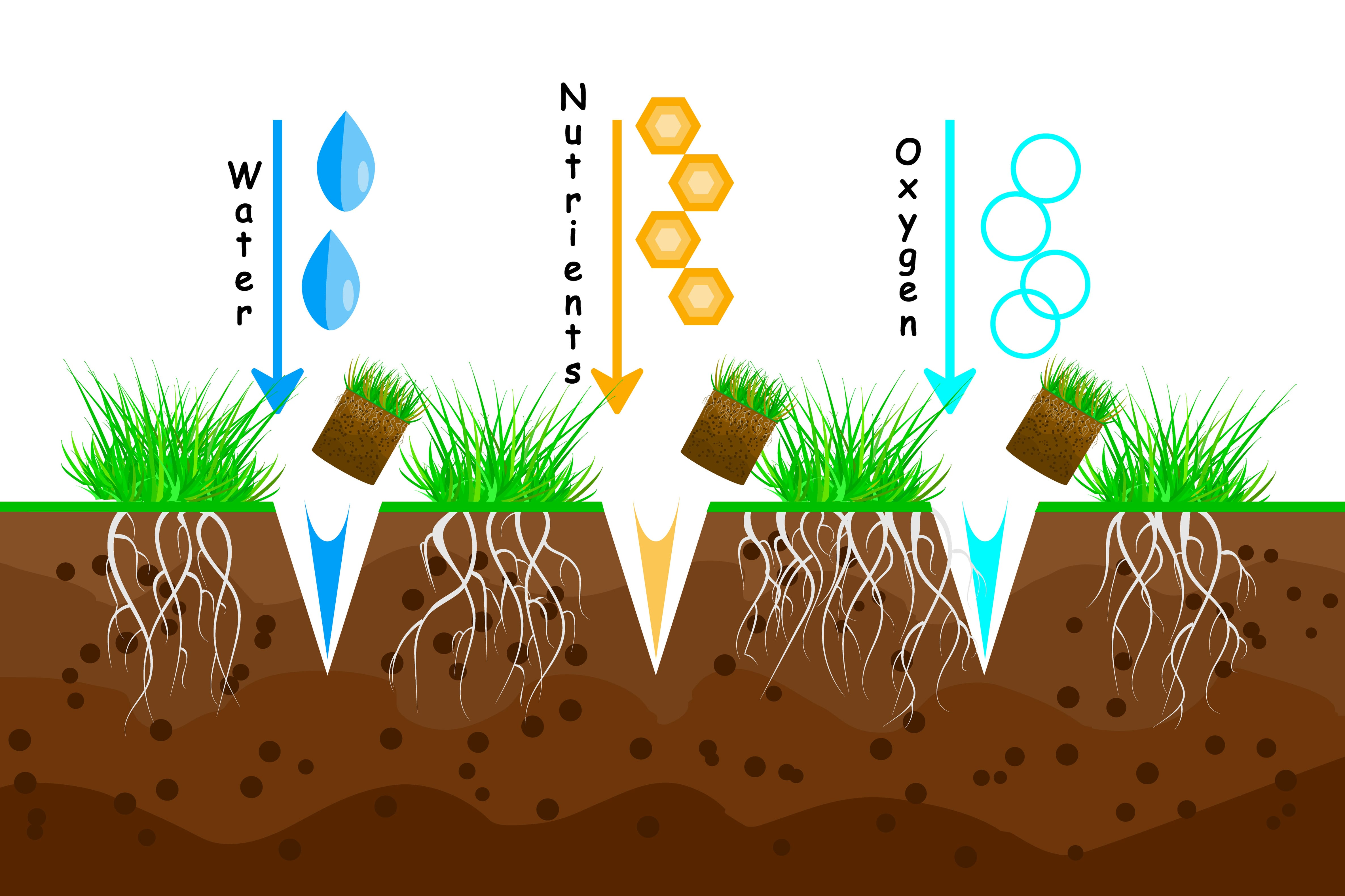 Lawn aeration. Lawn grass care service, gardening and landscape design. Waste of aeration technique used in the upkeep of lawns and turf. Lawn maintenance. Illustration for article, infographics or instruction. Stock vector