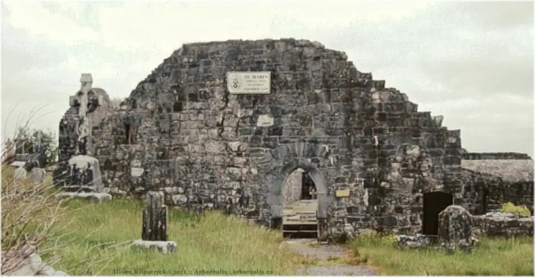 Photograph of the remains of the Carmelite Abbey at Ballinasmale, or Ballinasmaula, in the parish of Kilcolman (Clanmorris), county Mayo.