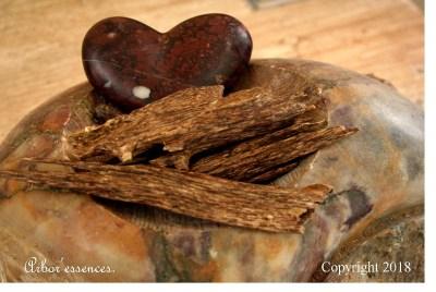 agar_wood