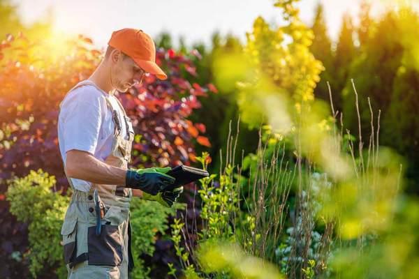 creating estimate landscaping
