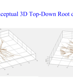 top down root diagram [ 2794 x 1248 Pixel ]