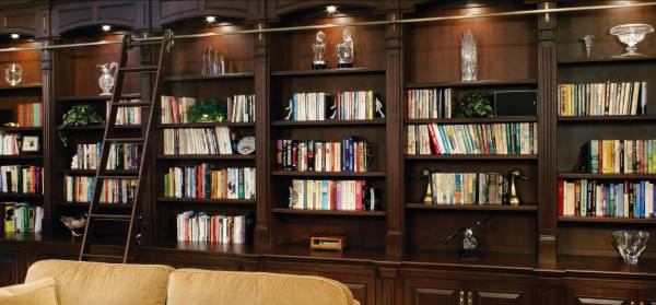 Design Striking Home Library Shelves And Cabinets