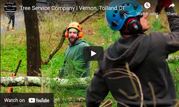 arbortech-tree-services-tree-removal-video1