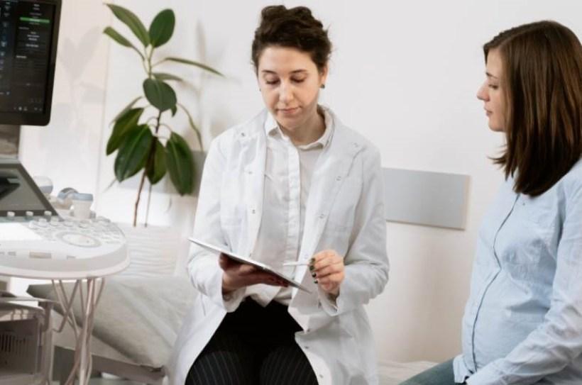 Hibou visage cache branche sapin