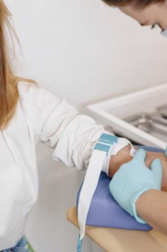 arbre champignons