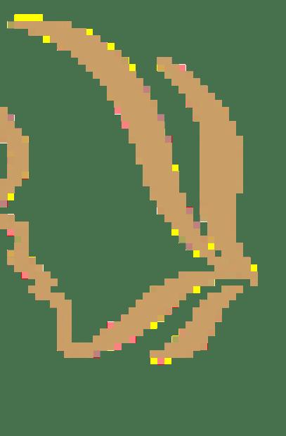 arbre nuit