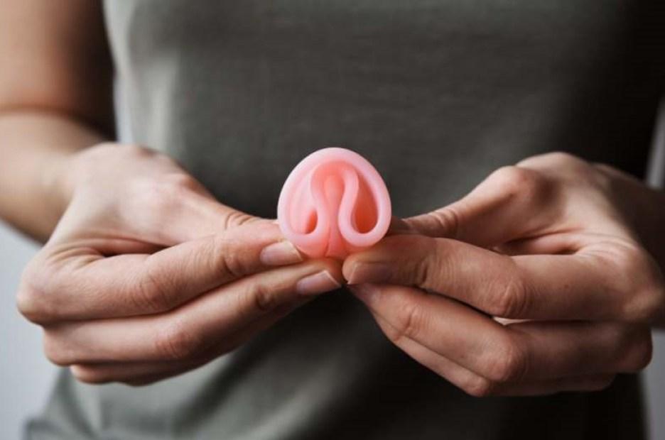 lac Pavin arbres reflet