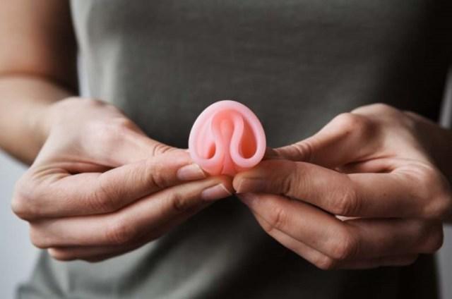 lanterne papillon au bord