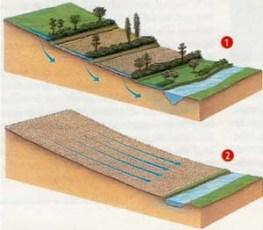 Shéma de différences comportementales sous l'action de l'eau entre une parcelle avec des arbres et parties enherbées et une parcelle nue.