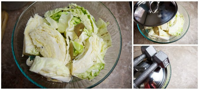Easy Pickled Cabbage (5)