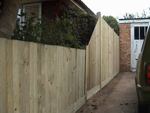 Standard close board fencing