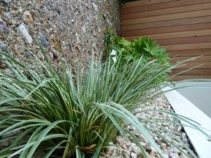 A simple planting border with cotswold buff gravel