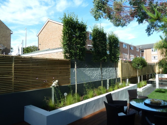 The pleached hornbeams did a great job of hiding the adjacent block of flats from the deck area