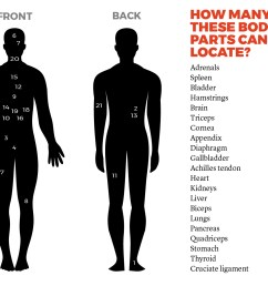 do you know enough basic anatomy to keep yourself healthy it s time to find out popular science [ 1280 x 1024 Pixel ]