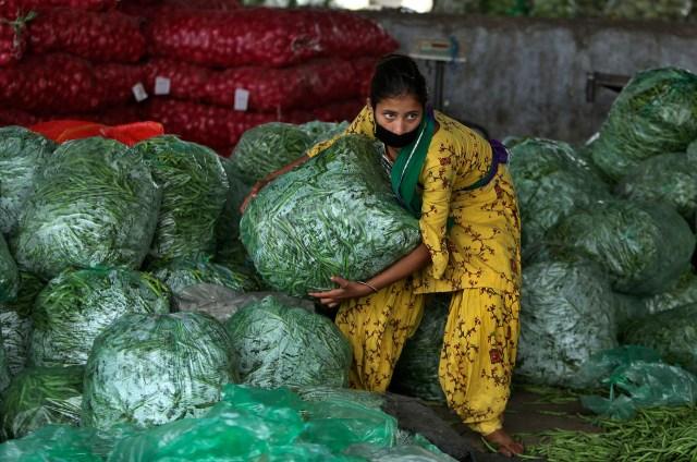 Una niña india trabaja en un mercado mayorista de verduras durante el cierre en Jammu, India, el lunes 20 de abril de 2020 (Foto AP/Channi Anand)