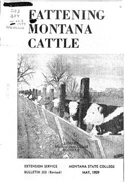 Fattening Montana Cattle, Montana State University (MSU