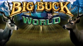 Big Buck World released