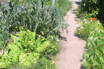 Vegetable garden in the Royal Botanic Gardens Melbourne