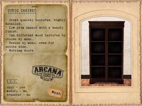 {A} Curio Cabinet Vendor