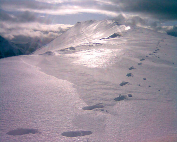 Footprints on An Teallach