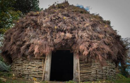The Early Medieval Irish Roundhouse at UCD, Centre for Experimental Archaeology