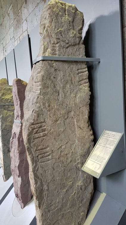 photo of an upright Stone with Ogham inscription along the edge