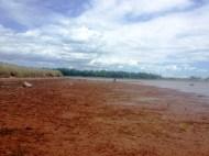 the Brae shore