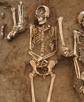 One of the skeletons in the grave with others around it