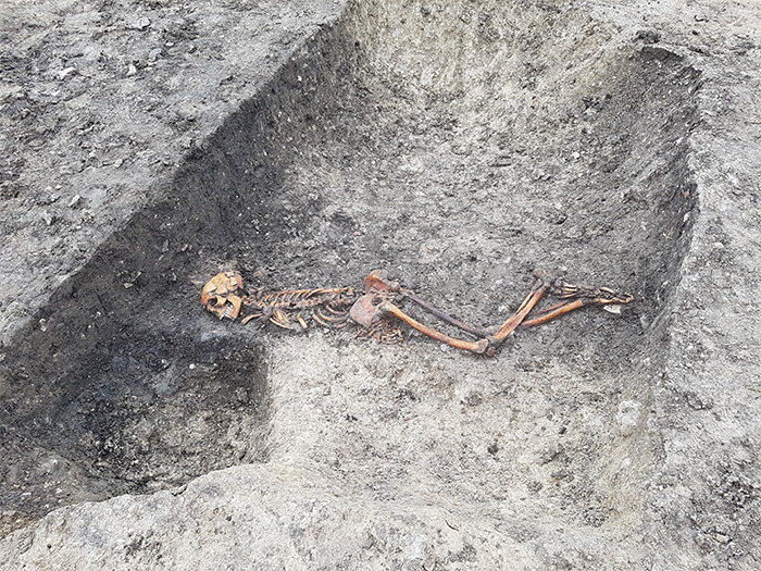 A male skeleton found face-down in a ditch