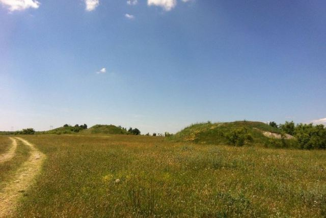 The three Ancient Thracian mounds near Bulgaria's Tatarevo, Plovdiv District. At least the largest of them is to be excavated by Plovdiv archaeologists in emergency excavations to try to rescue its tomb(s) and graves from the ruthless treasure hunters. Photo: Parvomai.net