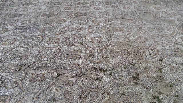 The archaeologists working on the re-excavation and conservation of the Early Christian floor mosaics in the 5th century Great Basilica in Bulgaria's Plovdiv have uncovered almost completely the older layer of mosaics. Photo: Plovdiv Mayor Ivan Totev, Facebook Profile