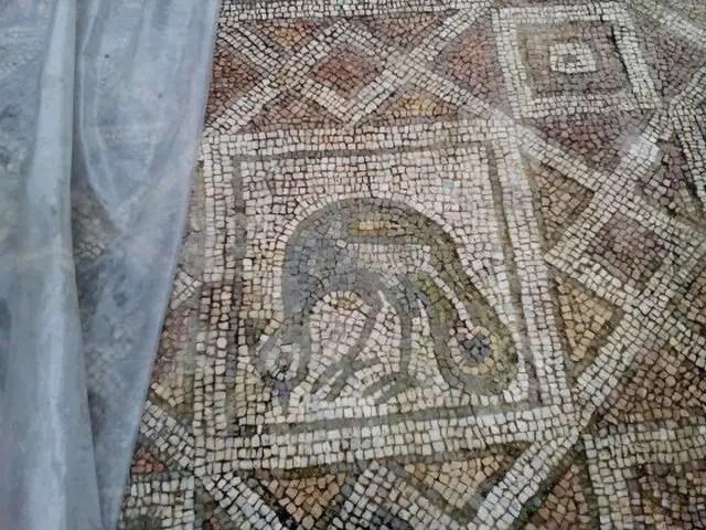 Plovdiv Basilica Mosaics 4