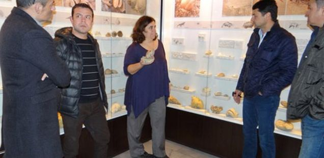 Museum of Natural History in Bulgaria's Burgas Buys Out Rare Black Sea Coast Fossils with Donation