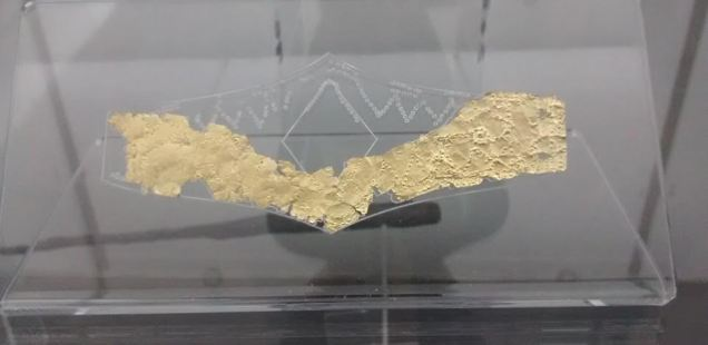 Newly Restored 3,000-Year-Old Gold Breastplate from Huge Thracian Necropolis in Western Bulgaria Shown for the First Time