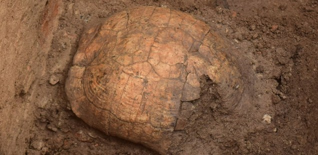 Puzzling Burial with Tortoise Shell Discovered in Ancient Roman Tomb on Medical University Campus in Bulgaria's Plovdiv