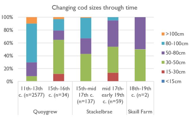 Changing Saithe sizes through time