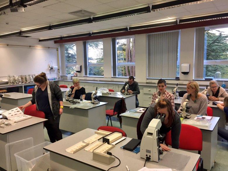 Labwork in Perth College