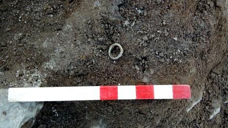 The bronze ring in situ