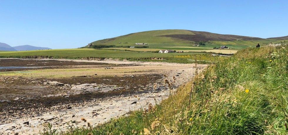 Orphir shore, Orkney. (Sigurd Towrie)