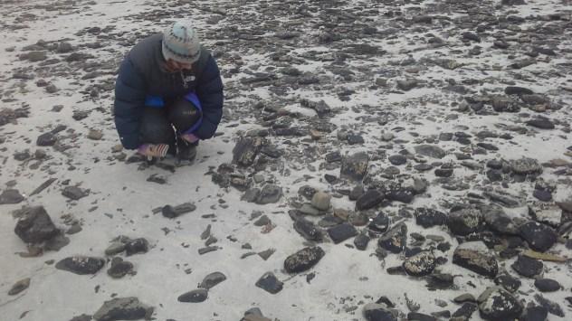 Subrectangular stones