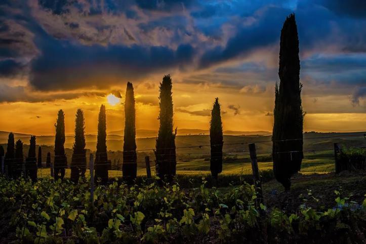 tuscan_sunset_by_baldrich_de46cht-fullview