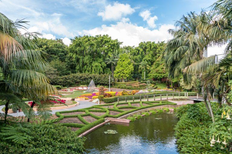 5 Water Garden Landscaping Ideas