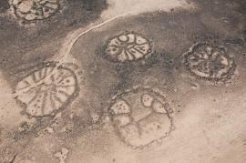 roues-vues-du-ciel-oasis-azraq-jordanie
