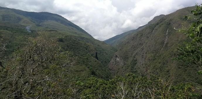Une mystérieuse cité perdue inca découverte dans la jungle près du Machu Pichu