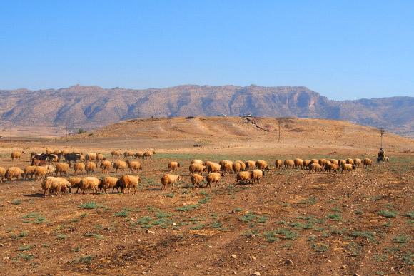 Tell de Bassetki, Kurdistan irakien