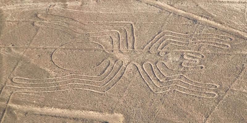 decouverte-archeologique-lignes-nazca-perou-araignee