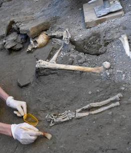squelettes-humains-pompei-regio-v