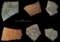 Prieš 60 000 m. išgraviruoti stručių kiaušinių lukštų fragmentai. Pietų Afrika, Diepkloof Rock Shelter. Šaltinis: http://ifas.hypotheses.org/1379